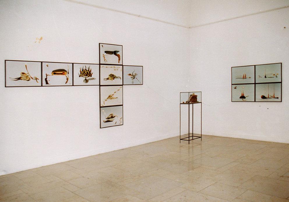 "Ausstellung ""contrapartida"",UdK Berlin, 1998"