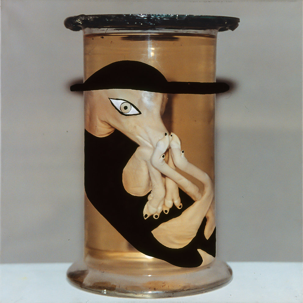 """""""Zustandspräperationen - christianisiertes Embryo"""" aus dem Naturkundemuseum Berlin, übermalt, 100x100, 1994"""